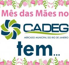 site - no cadeg tem-01